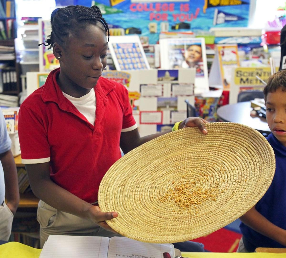 Parkway work grows into lessons on rice