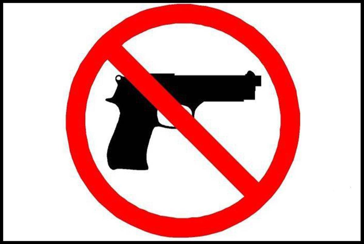 Forum on gun violence Sunday at Summerville High School