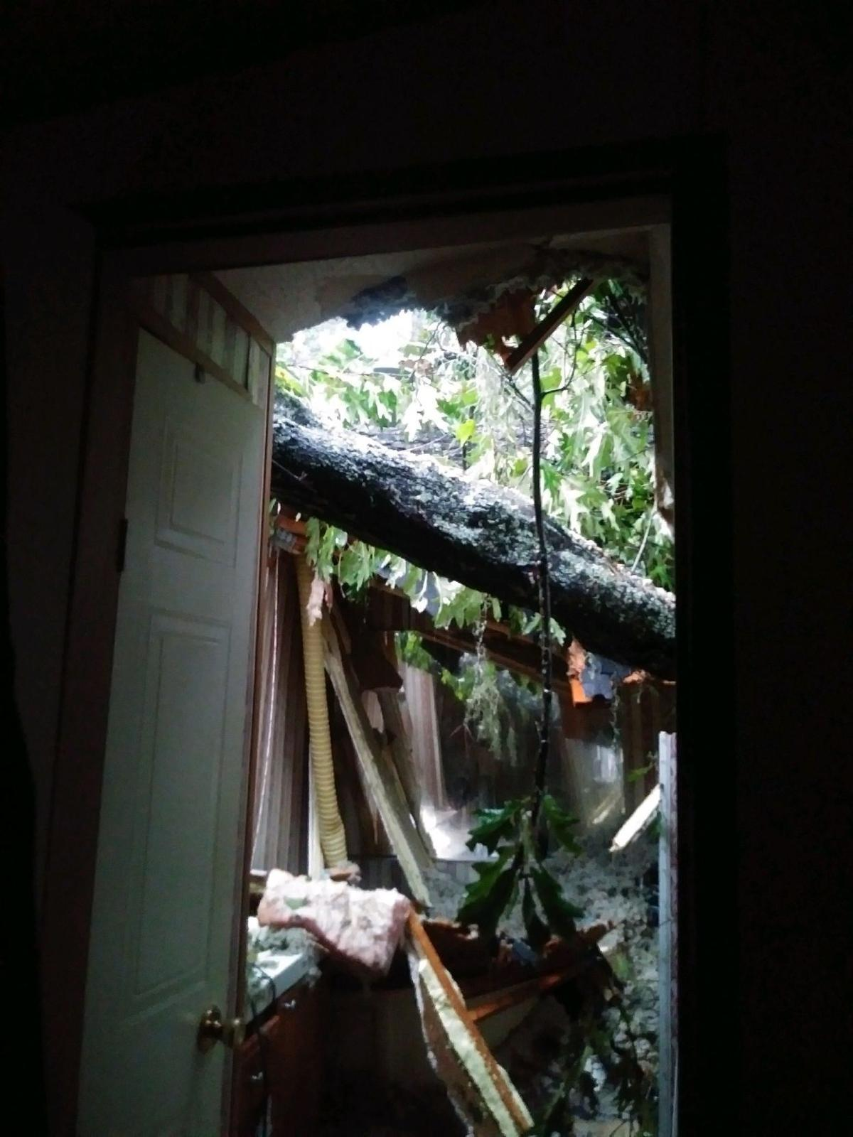 Oak through roof of Johns Island home