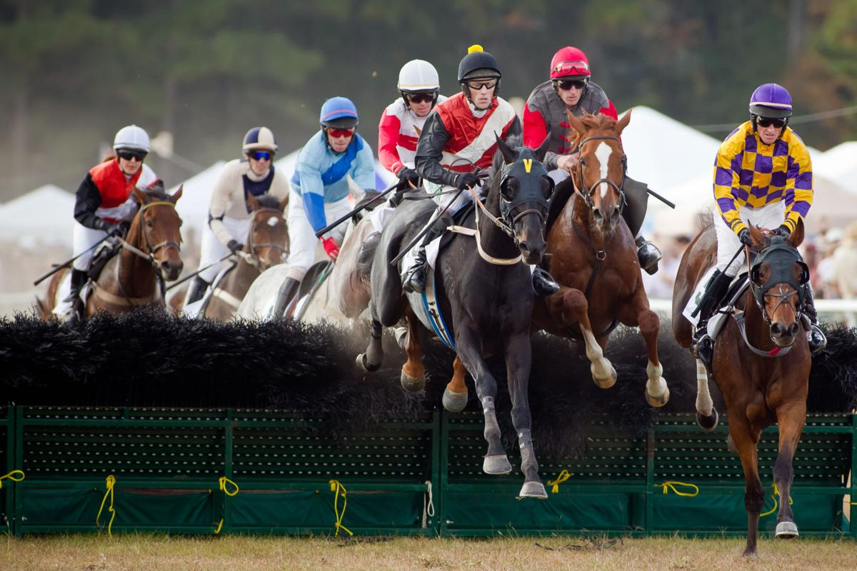Steeplechase races return to Stono Ferry this weekend
