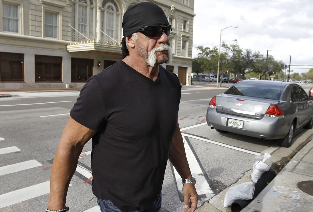 Hogan sues friend, website over sex tape