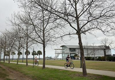 IAAM site Bikes.jpg (copy)