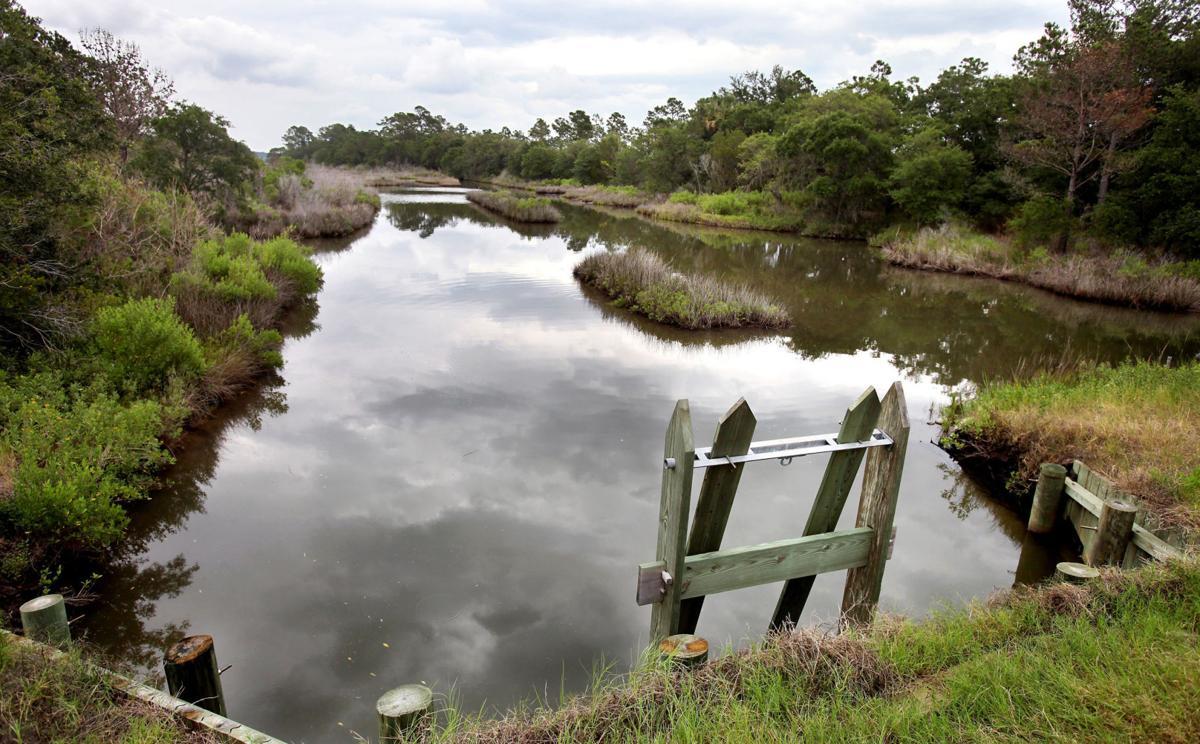 Fraser wary of Beach Co.'s Kiawah River plan