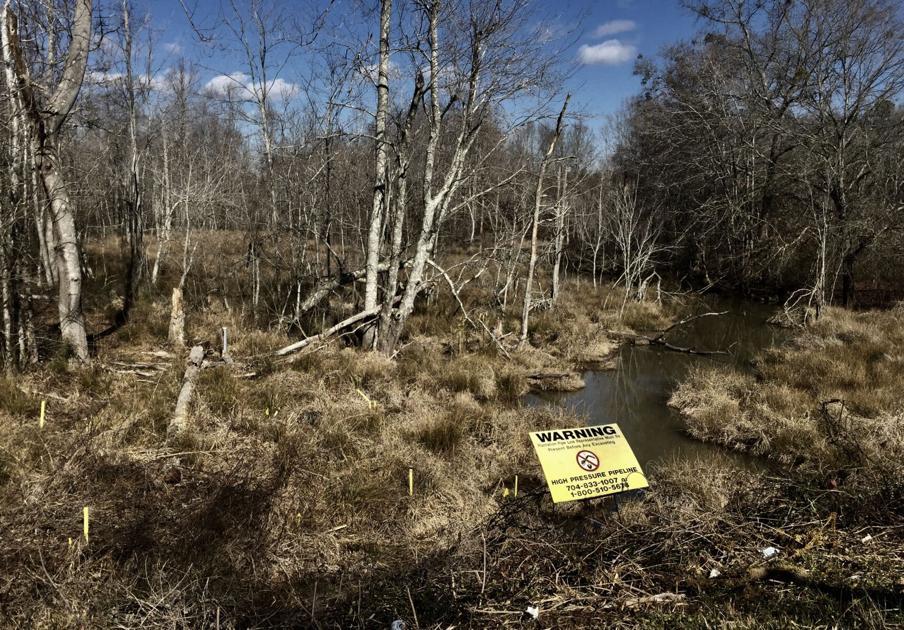 Environmental groups win $1.5 million settlement in Plantation Pipeline spill case - Charleston Post Courier