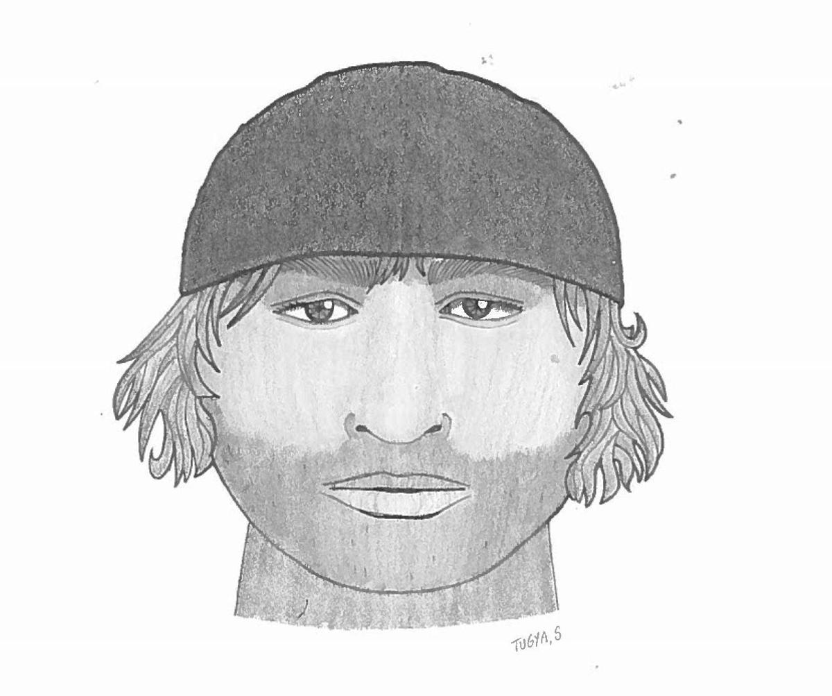 Charleston police searching for man who attempted daytime robbery of woman