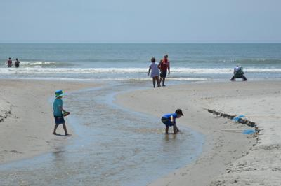 Bacteria Out Of Ocean Near Myrtle Beach