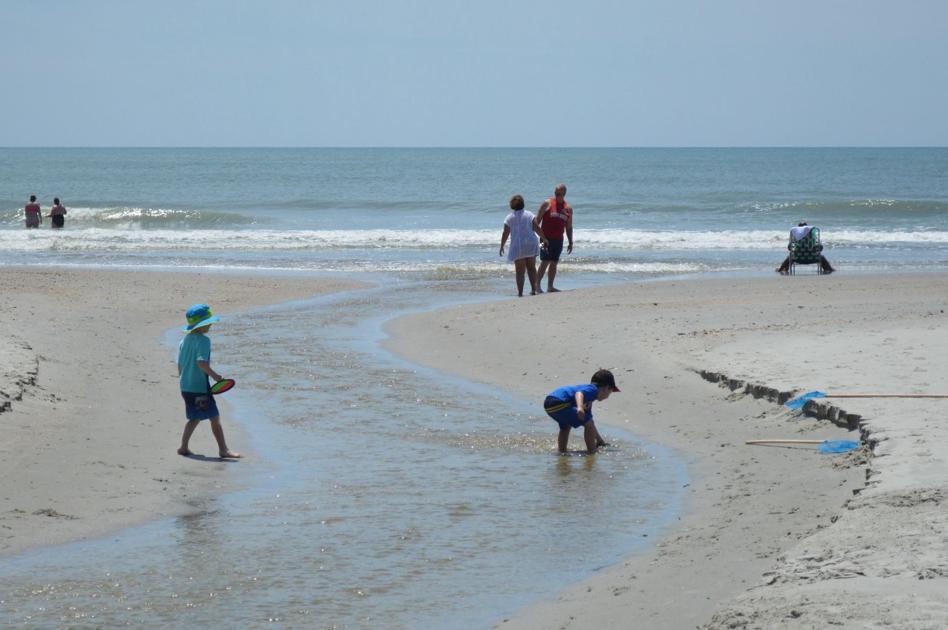 Bacteria Out Of Ocean Near Myrtle Beach