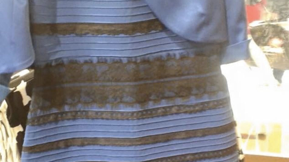 Social media recap: Llamas on the lam, net neutrality and this blue (or is it gold?) dress