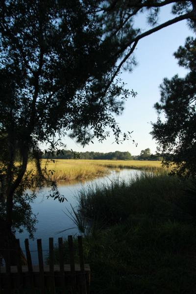 Charleston County Parks Old Towne Creek County Park