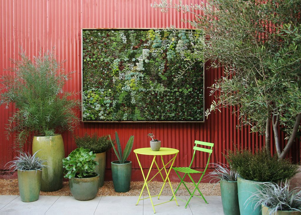 'Living pictures' for garden walls