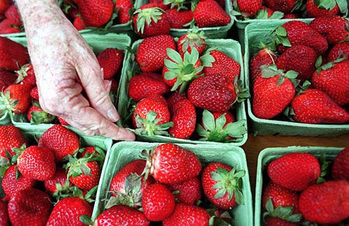 Berry bountiful