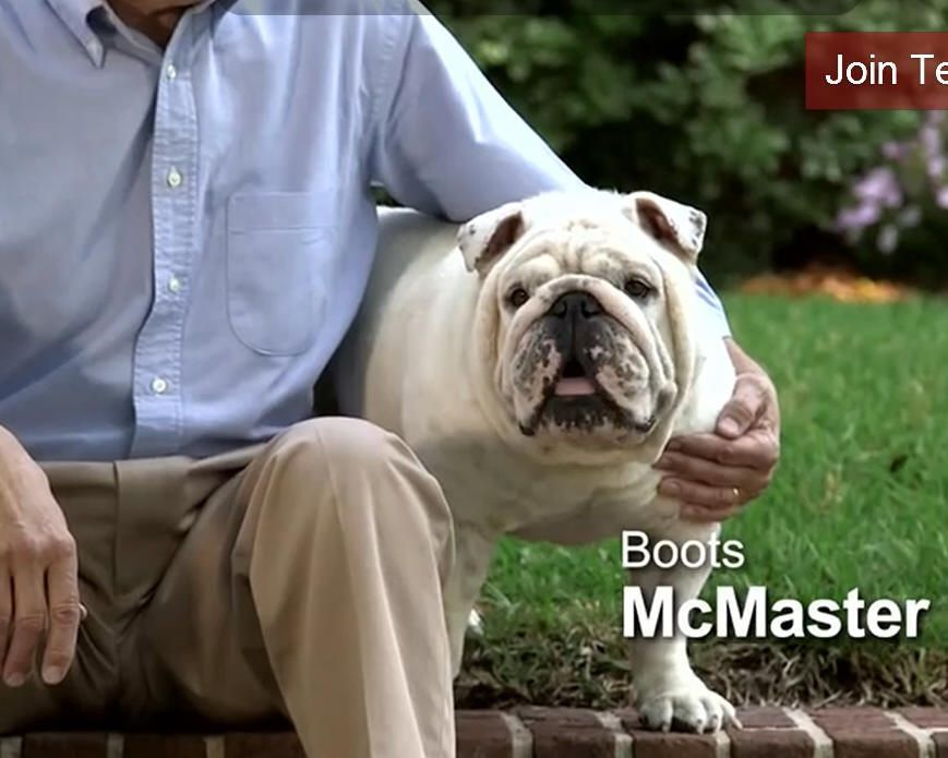 Political campaign in S.C. goes to the dogs