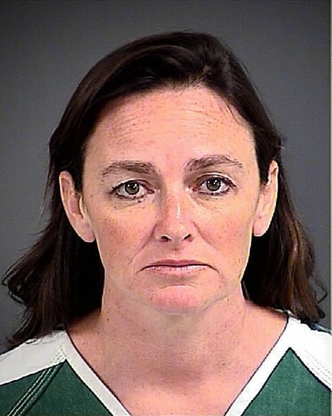 Johns Island woman accused of mistreating horses