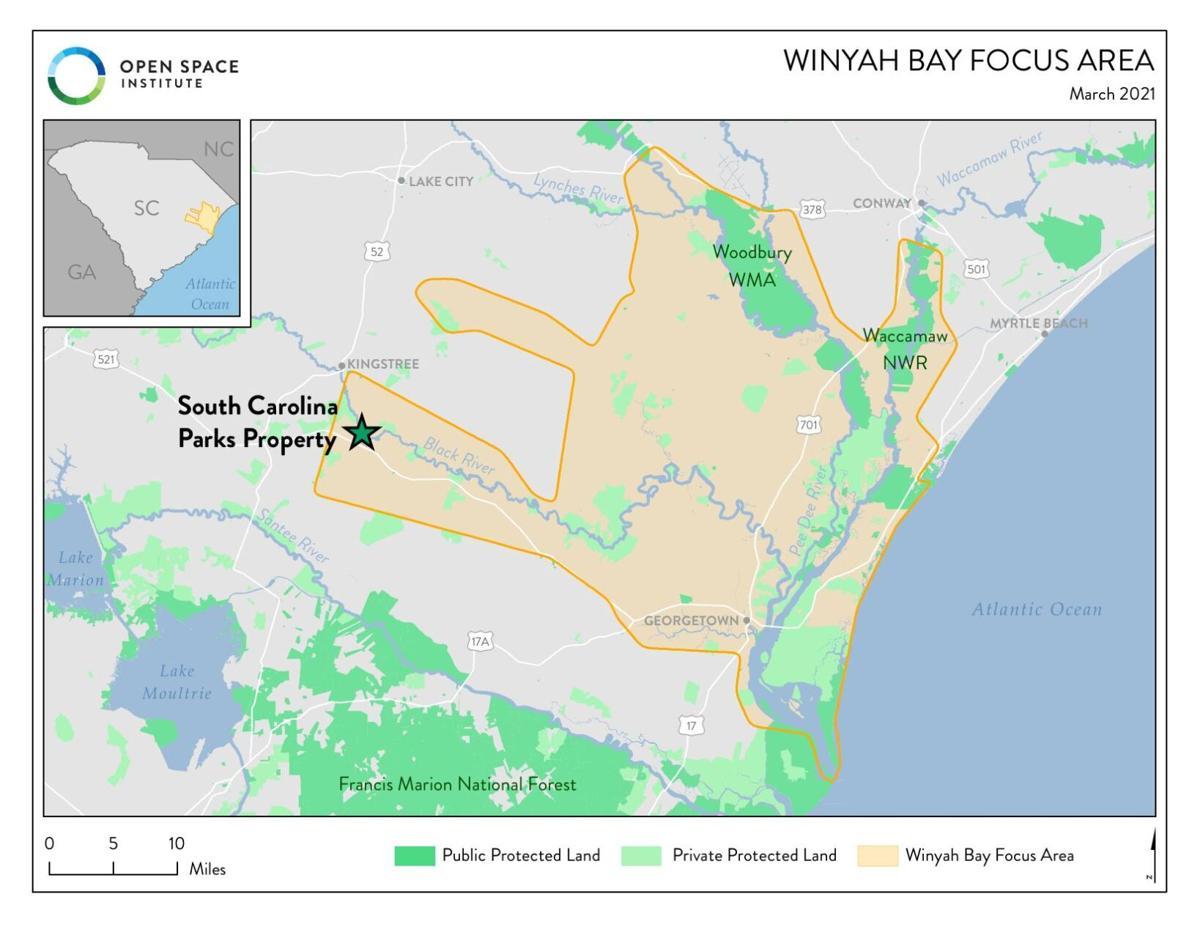 Winyah Bay focus area