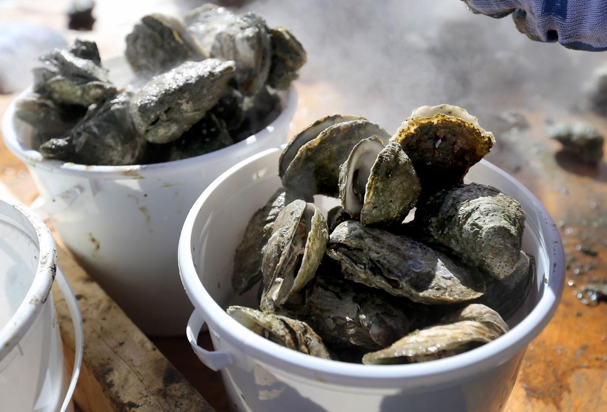 Oyster Roast (copy)