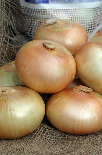 Museum celebrates sweet Vidalia onion