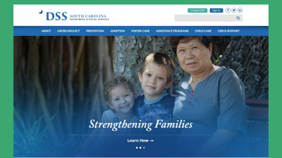 DSS homepage
