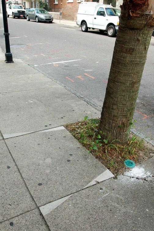 Sidewalk repairs a constant struggle