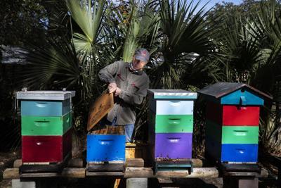 jim with hive.jpg