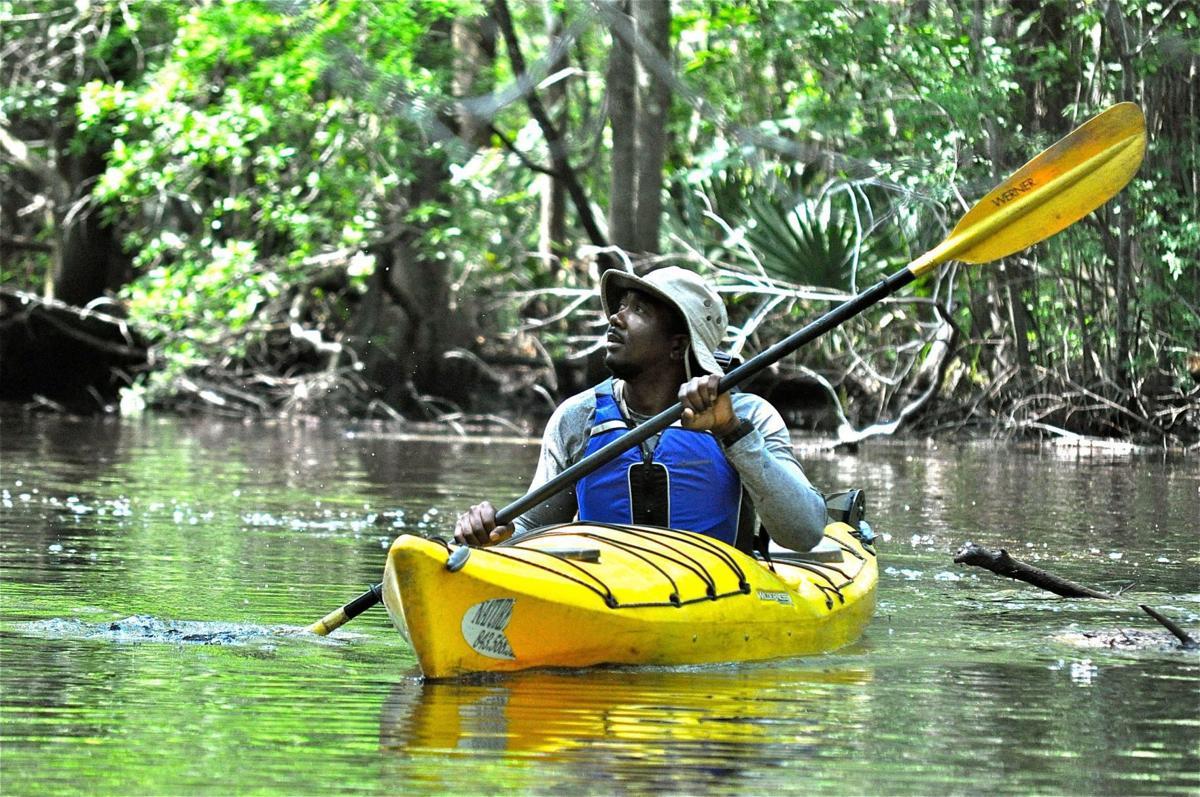 Wambaw Creek paddle