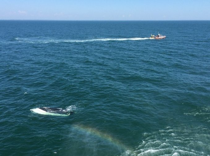 Coast Guard rescues three people after boat capsizes near Isle of Palms