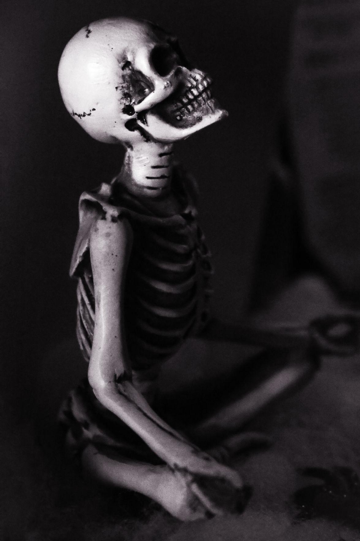 Amy-Stevens Spooky.jpg