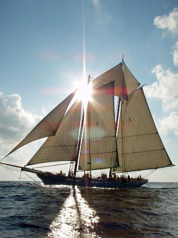 Foundation aims to acquire Spirit of South Carolina