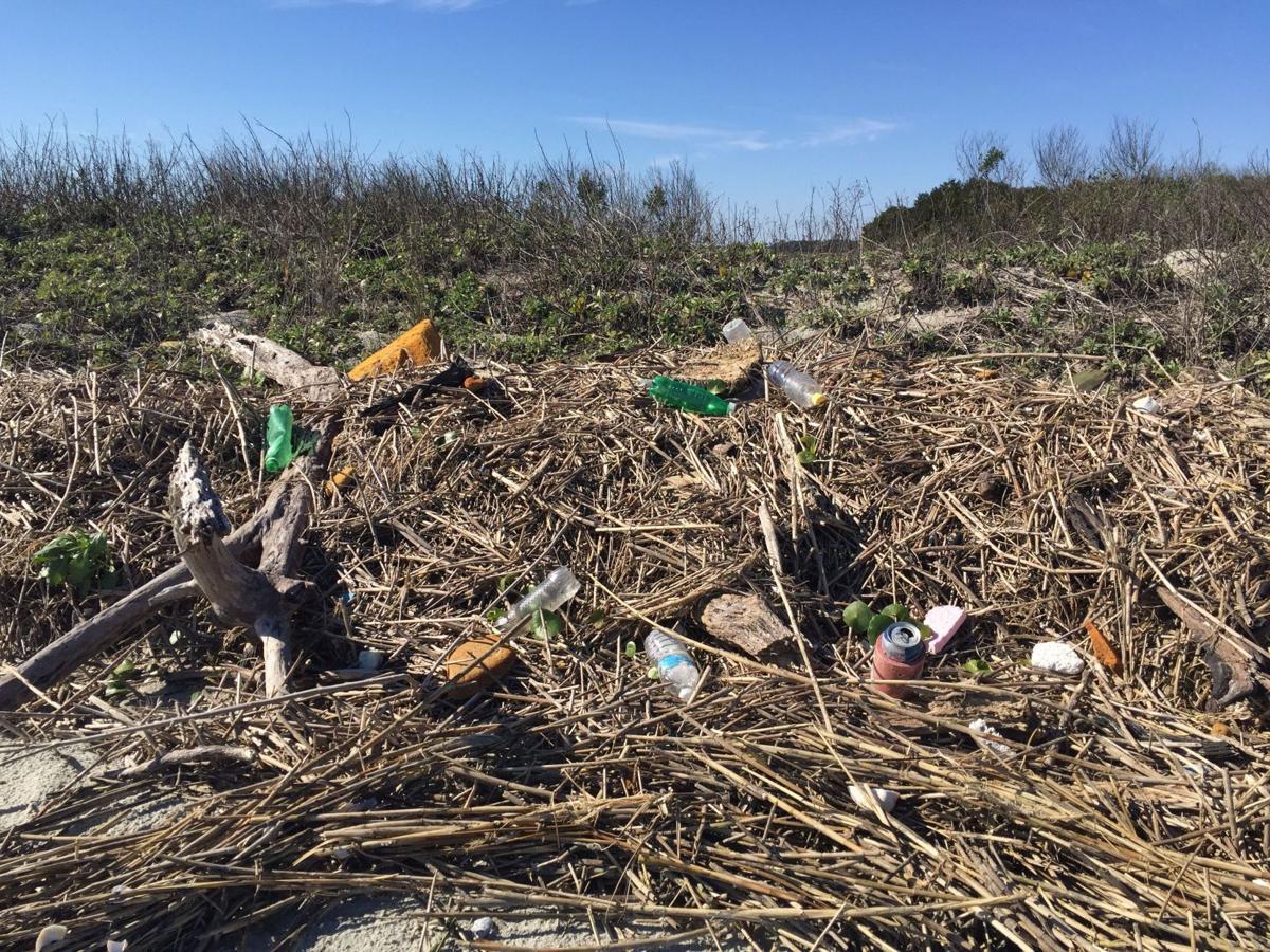 Morris Island trash target of volunteer effort