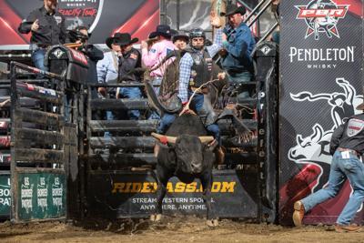 Professional Bull Riders (copy)