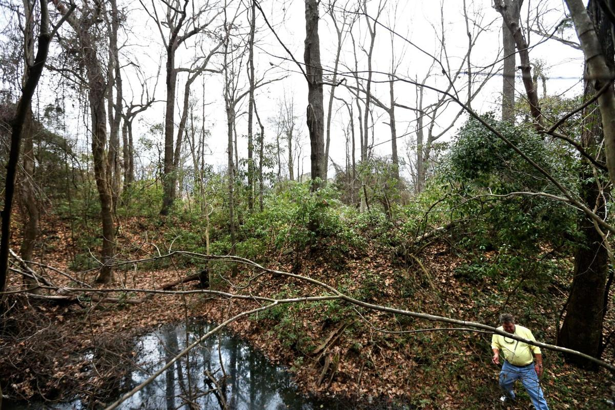 Earthen Confederate fortifications hide in plain sight