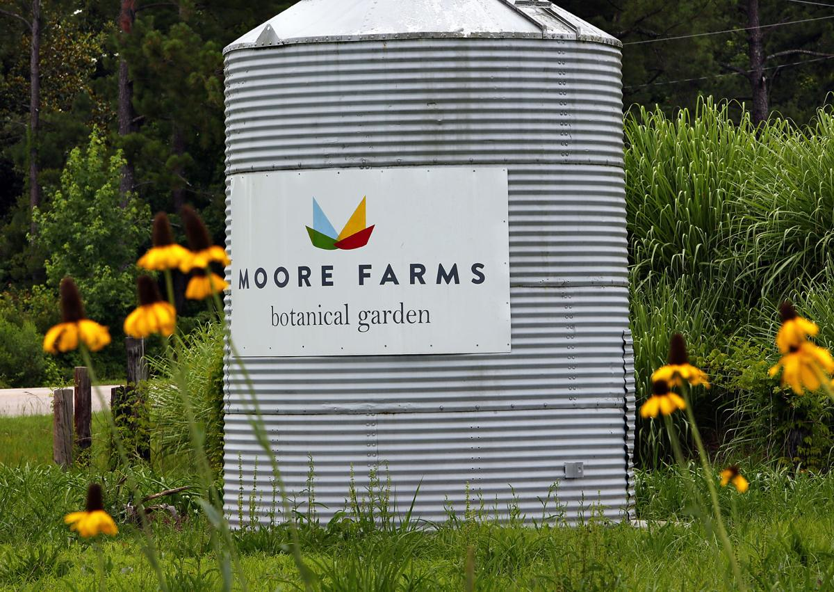 Moore Farms Botanical Garden Is A Beacon Of Horticulture