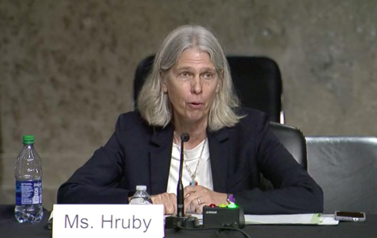 Jill Hruby, SASC Screenshot (copy)