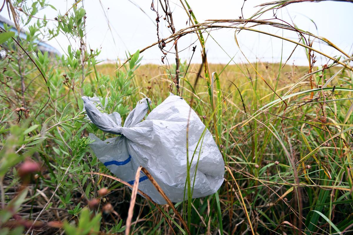 riverside plastic bag.jpg