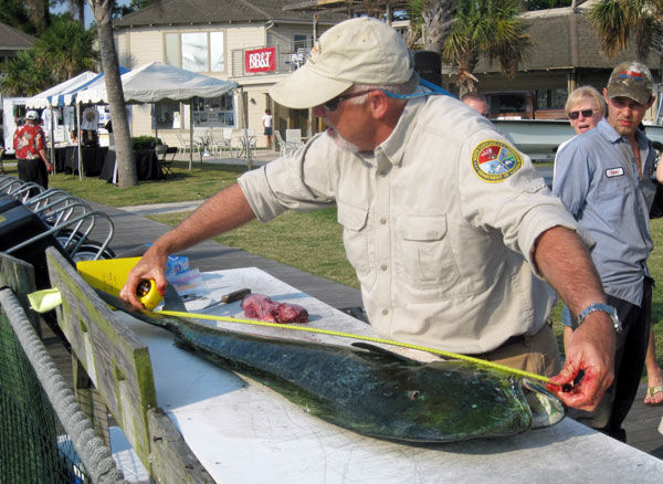 Hooked on science: Billfishing Series is a treasure trove for fisheries biologists