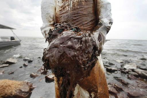 Oil reaches Florida Panhandle