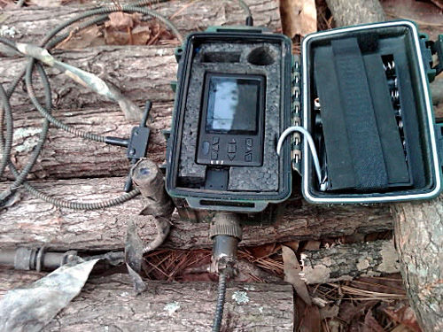 Access to U.S. Forest Service surveillance info denied