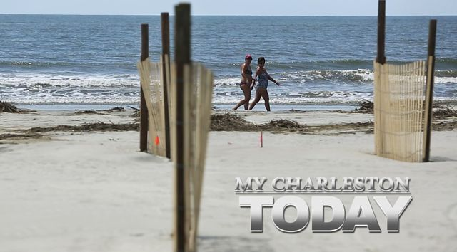 My Charleston Today: Folly Beach County Park prepares to reopen