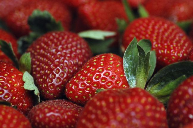 Peach, strawberry crops dodge weekend cold spell