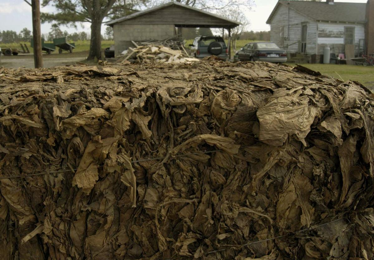 Court to decide if 800K tobacco growers too many for 1 case