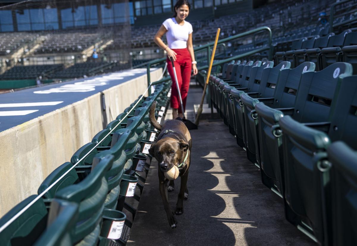 LEDE riverdogs02.jpg
