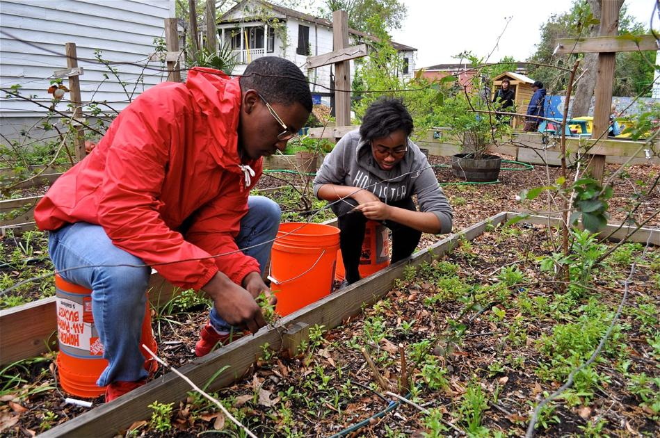 From blighted lot to a flourishing garden, public invited to celebrate a Charleston transformation
