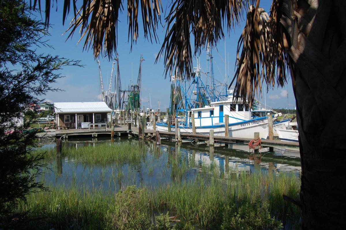 Officials look at ways to use docks on Shem Creek