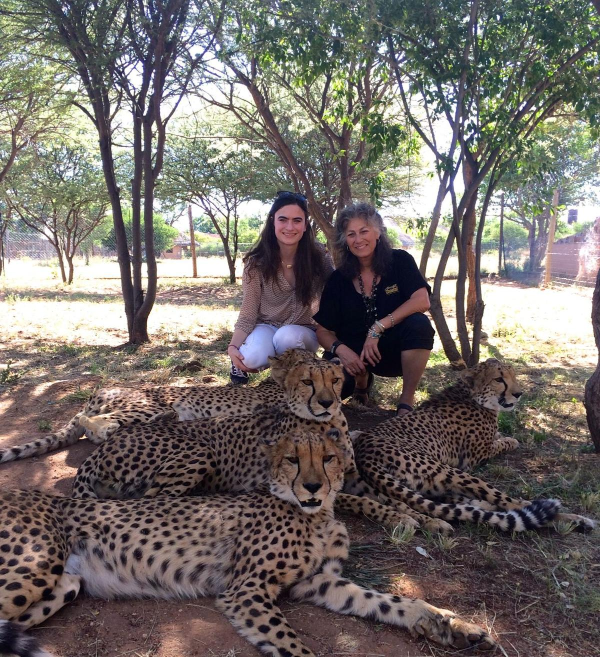 Keeper of the cats; cheetah conservator to speak at Ashley Hall