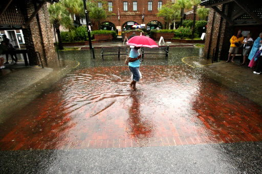 Thirsty Lowcountry gets much-needed steady rain