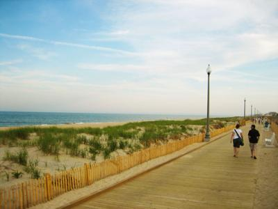 Vacation For The Dogs Rehoboth Beach A Fun Friendly Locale For
