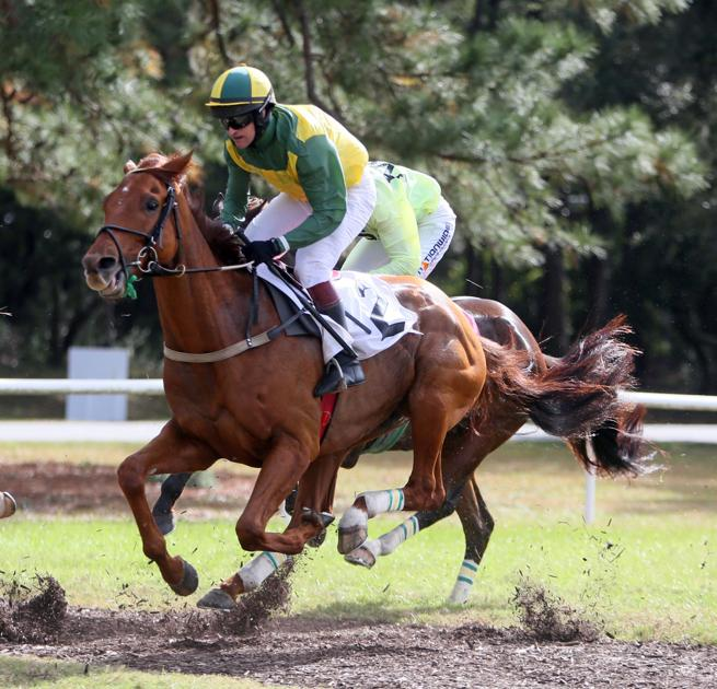 National Steeplechase Ends In Charleston, Where Horse Race