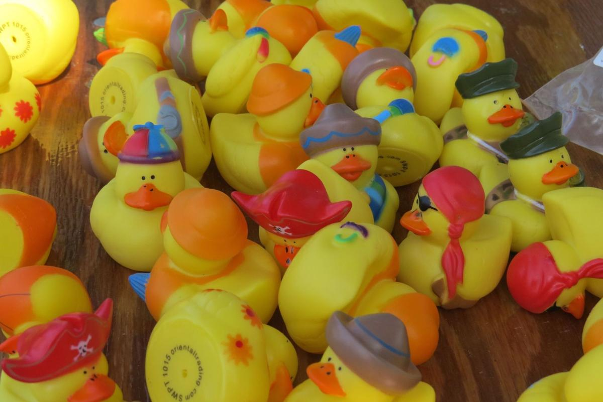 10th Annual Rotary Charity Duck Race
