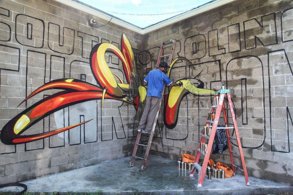 International street artist brings 3D skills to Charleston