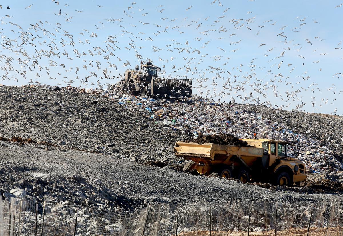 Berkeley County landfill