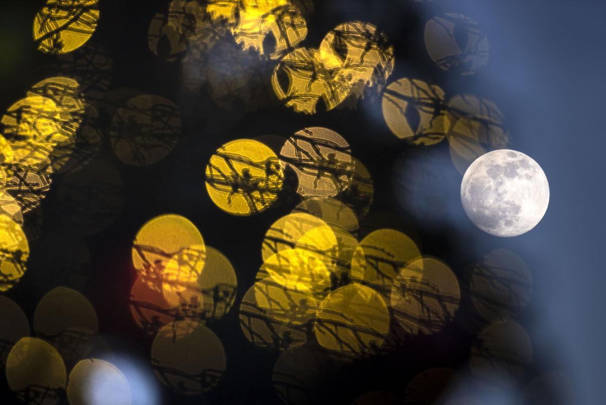 Moons online only05.JPG